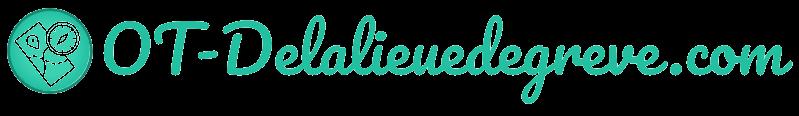 officetourisme-delalieuedegreve.com